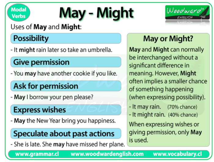 Lesson 9  Using Modal Verbs